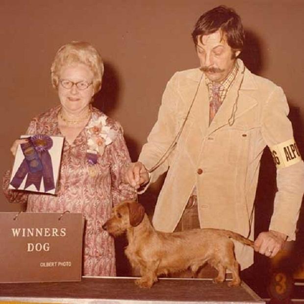 Dachshund، این اسم به قرن 17 میلادی بر میگردد که در آلمان از این سگ به عنوان سگهای شکاری استفاده میکردند و این نام را برایش در نظر گرفتند